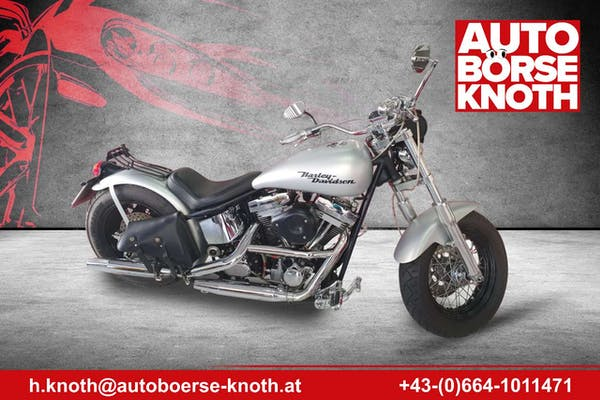 Harley-Davidson Custom Bike bei Autobörse Knoth e.U. in